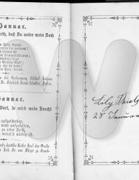Actes/USA/New_Jersey/Newark/01-27 records lily birth Augusta script.jpg